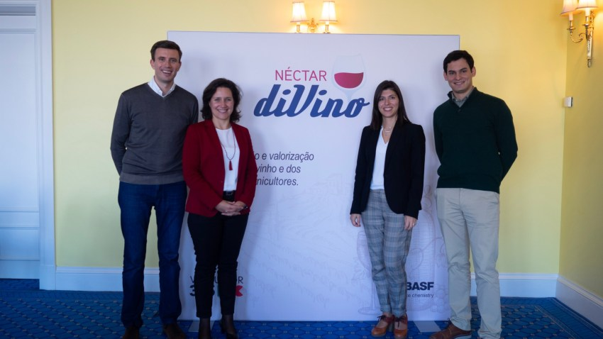BASF Agricultural Solutions | Nectar diVino